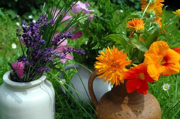 Kräuter Blumen Gesund
