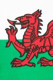 Welsh Flag Wales) poster
