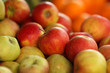 Colorful red and green apples on fruit stand. Shallow DOF.