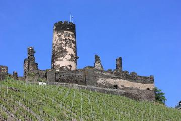 Burgruine Fürstenberg am Rhein (Juni 2010)
