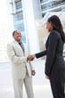 African Business Team Handshake