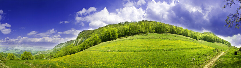 Fresh, clean summer landscape panorama