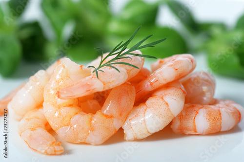 Salade Crevette - 23273077