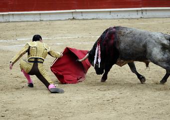 Matador on Knees