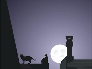 Gatos en la azotea