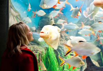 Girl looking at aquarium fish