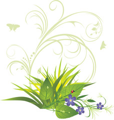 Bouquet of flowers with grass and decorative ornament. Vector