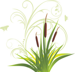 Cane and grass with floral ornament. Vector