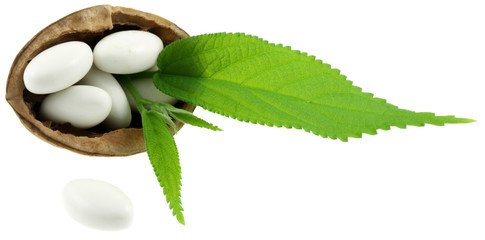 comprimés blanc, coque de noix, feuilles vertes, fond blanc