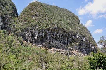 Höhlen in Vinales