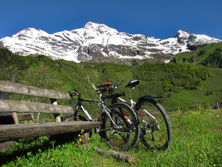 Mountainbikes at rest