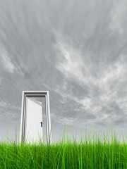 High resolution 3D white door opened in grass to the sky