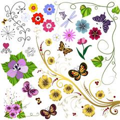 Big set flowers and  butterflies
