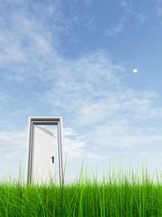 High resolution 3D white door opened in grass