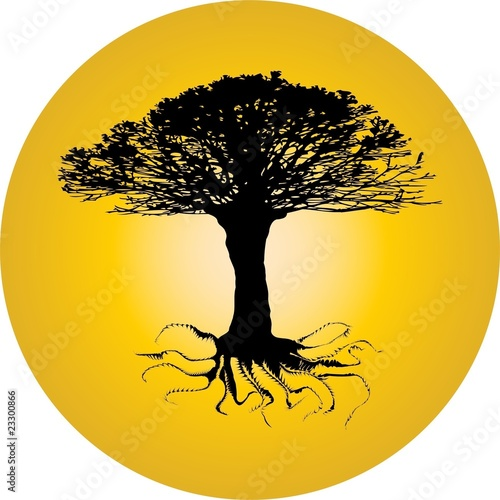 tree of a twisting root sphere. vector