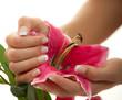 schöne Hände