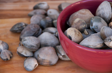 Clams in Red Bowl