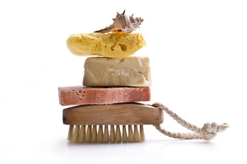 sponge brush shell soap