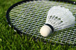 Badminton V