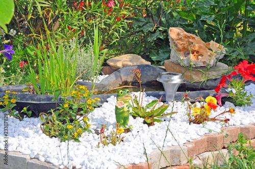 D Co Jardin Et Bassin Photo Libre De Droits Sur La