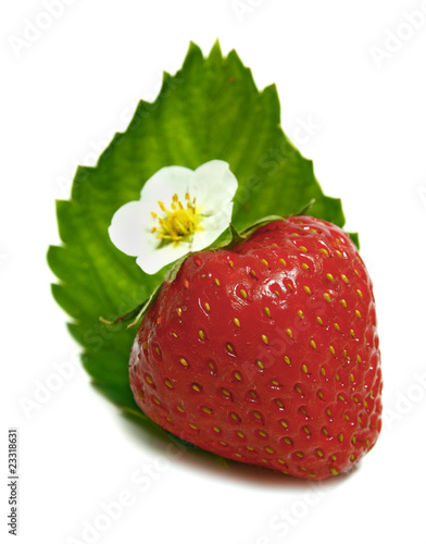 strawberry and blossom