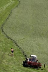 Landwirtschaft in der Schweiz
