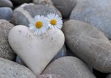 Herz auf Steinen mit Gänseblümchen