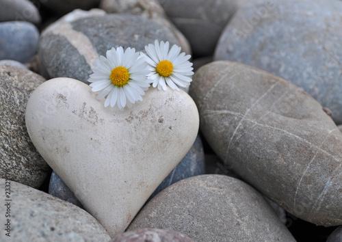 Deurstickers Madeliefjes Herz auf Steinen mit Gänseblümchen