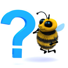 3d Question bee