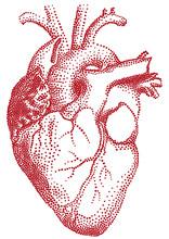 rotes Herz, Vektor-Illustration