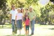 Extended Group Portrait Of Family Enjoying Walk In Park