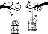 bircage and birds, vector