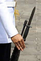 Palace guard at grand palace and his rifle