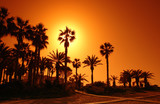 Chypre infrastructure hôtelière sur la plage de Paphos poster