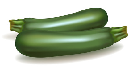 Green zucchini vegetable. Vector.