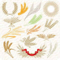 Wheat ears & laurel wreath & wheat sheafs