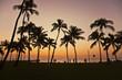 Sunset in Waikiki Hawaii