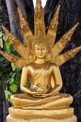 gold buddha with nagas