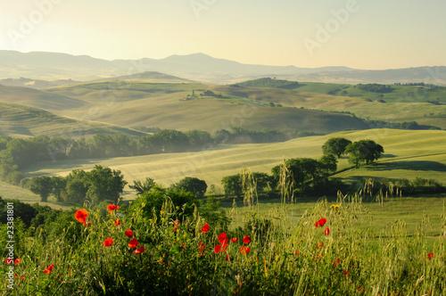 Toskana Huegel  - Tuscany hills 18 - 23381801
