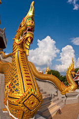 golden snake in the temple of thailand