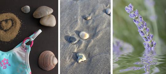 Provence : plage et lavande