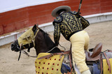 Picador and Horse