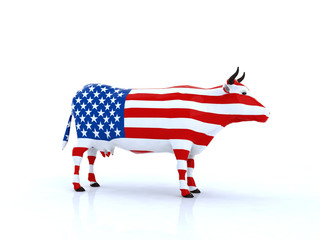 mucca americana