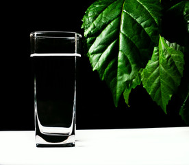 glass of water over leaf background