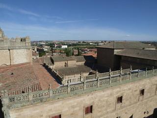 Detalle de la Catedral Nueva de Salamanca