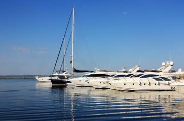 yachts at berth in marina