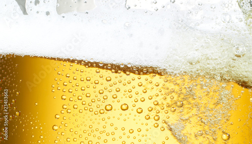 Fotobehang Bier Bierfond mit Tropfen 11 Ausschnitt