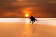 silhouette of a horse and rider galloping - 23438202