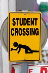 "Warning sign ""Drunken students crossing"""
