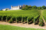 Chateau de Rully with vineyards, Burgundy, France - 23450042